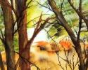 11-x-15-autumn-tree
