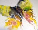11-x-15-butterfly